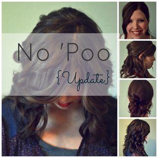 No-Poo-Update